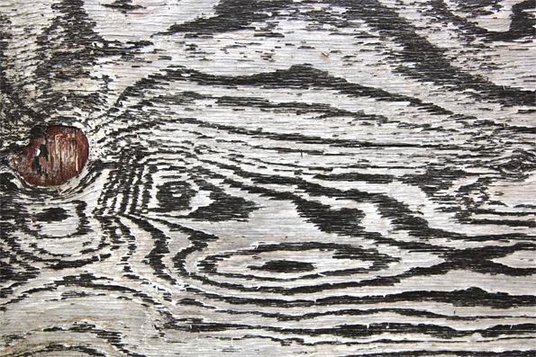 Garage Wood
